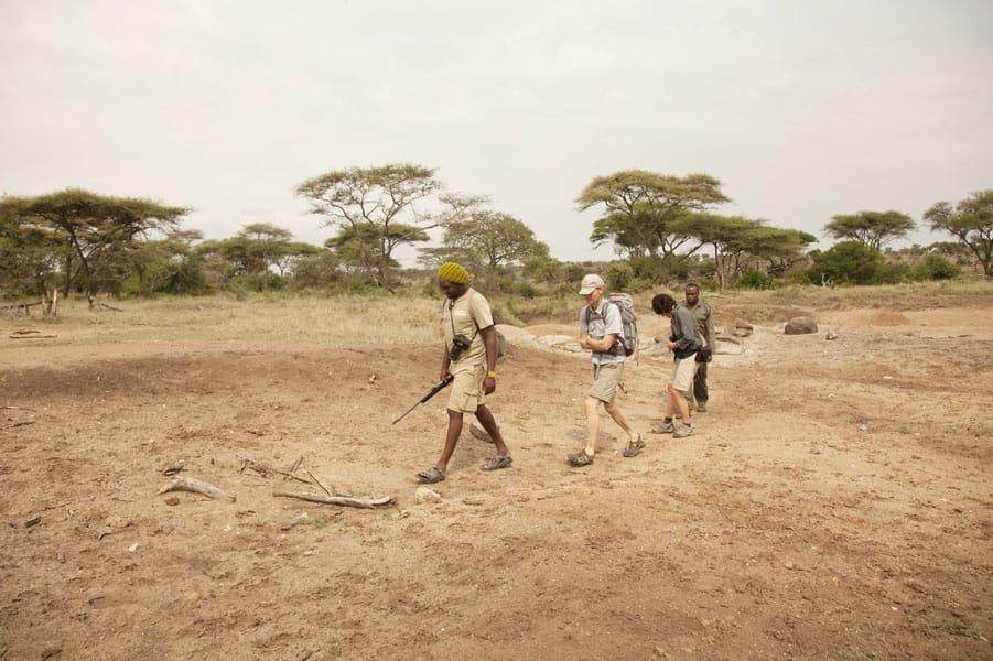Wayo Serengeti Walking Camp Guided Walks