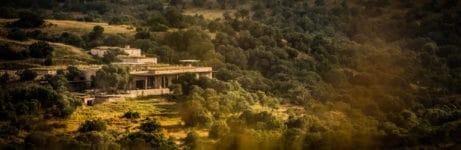 Arijiju Retreat View