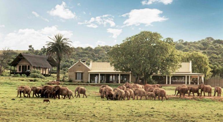 Gorah Elephant Camp View