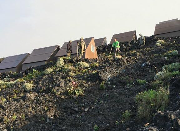 Nyiragongo Volcano Summit Shelters Outdoors