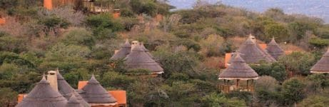 Thanda Safari Lodge View 1