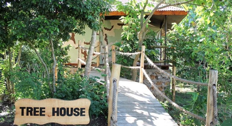 African View Lodge Treehouse