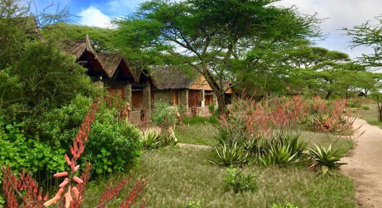 Ndutu Safari Lodge Landscape