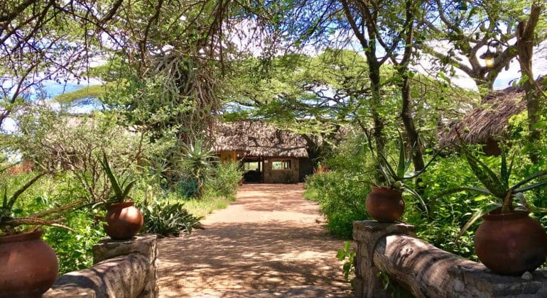 Ndutu Safari Lodge Reception