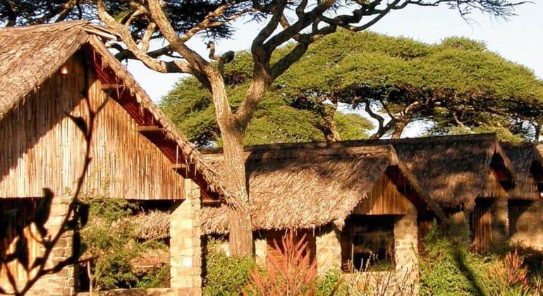 Ndutu Safari Lodge View