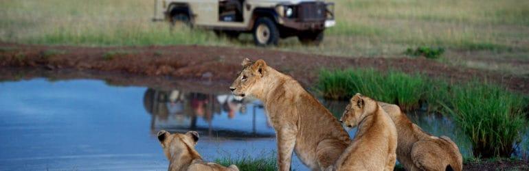 Singita Tanzania