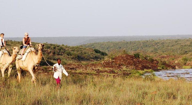 Sosian Lodge Camel Walk