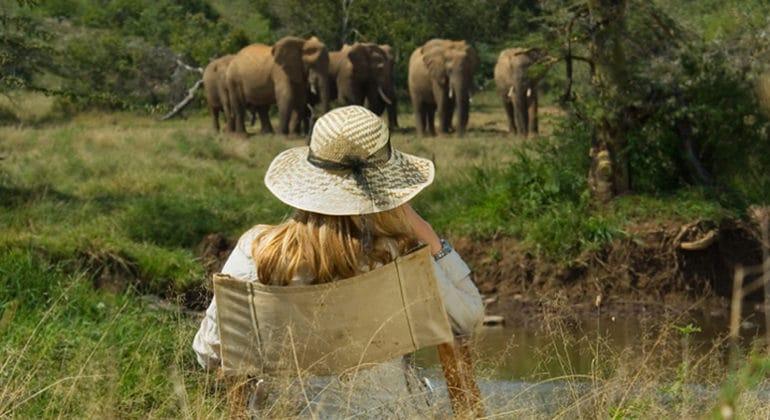 Sosian Lodge Elephants At Breakfast