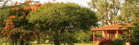 Sosian Lodge Gardens