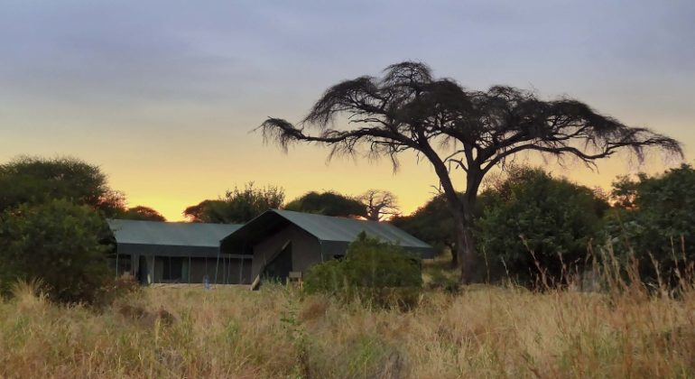 Tarangire View Camp Outdoors