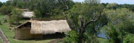 Mayukuyuku Bush Camp Tent View 1