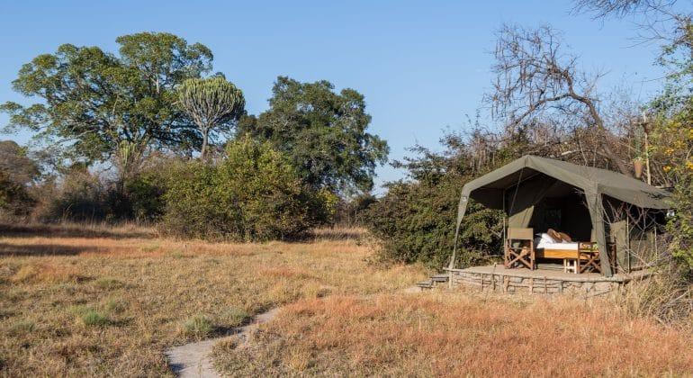 Ntemwa Busanga Camp Tent