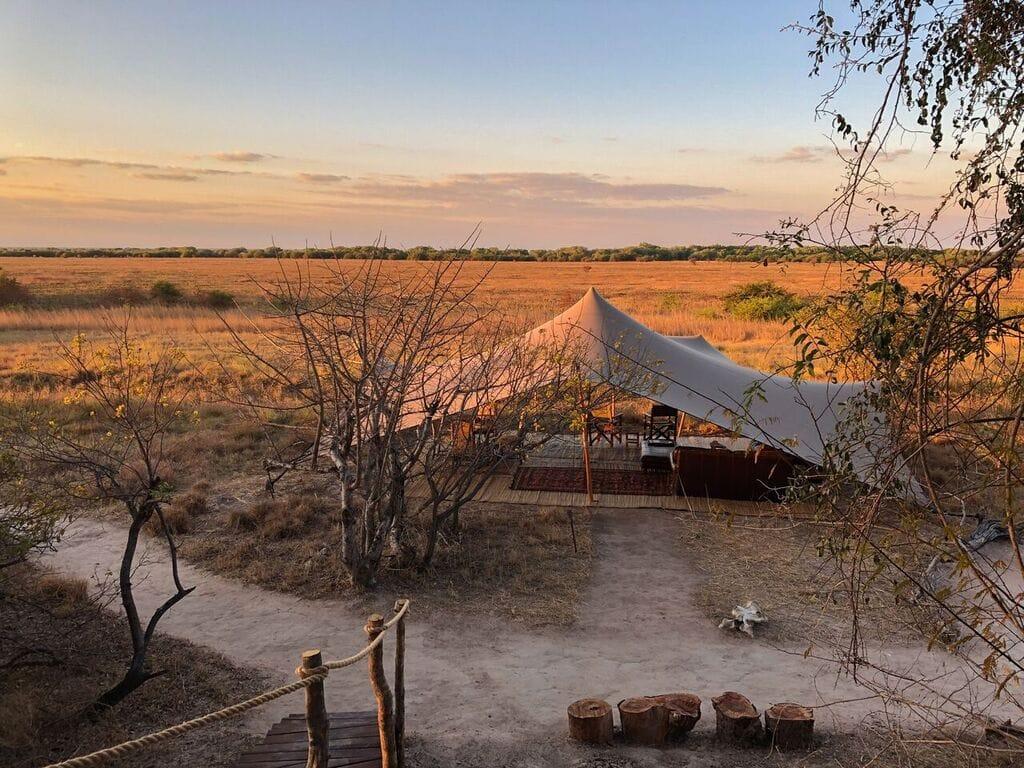 Ntemwa Busanga Camp Tent View