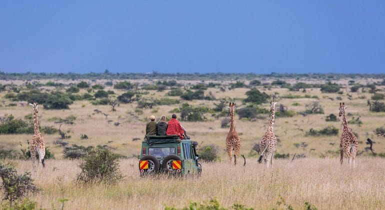 Siruai Expedition Camp Game Drive